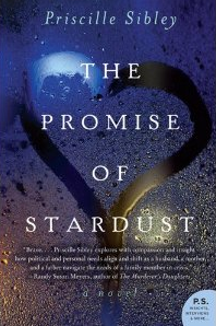 the-promise-of-stardust-book